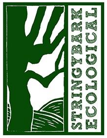 Green Native Tree logo